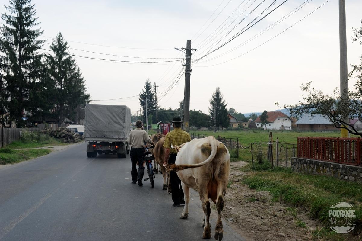 Rumunia samochodem