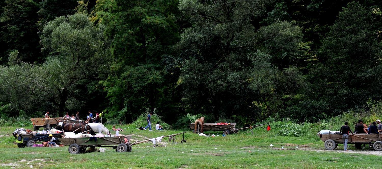 Rumunia okręg Maramuresz cyganie