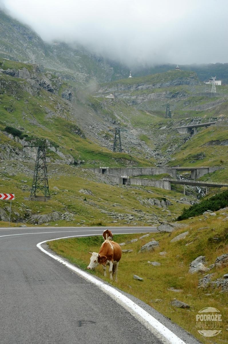 Rumunia droga trasa Transfogaraska