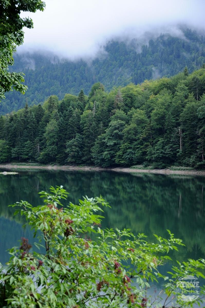 Park Narodowy Biogradska Gora Czarnogóra