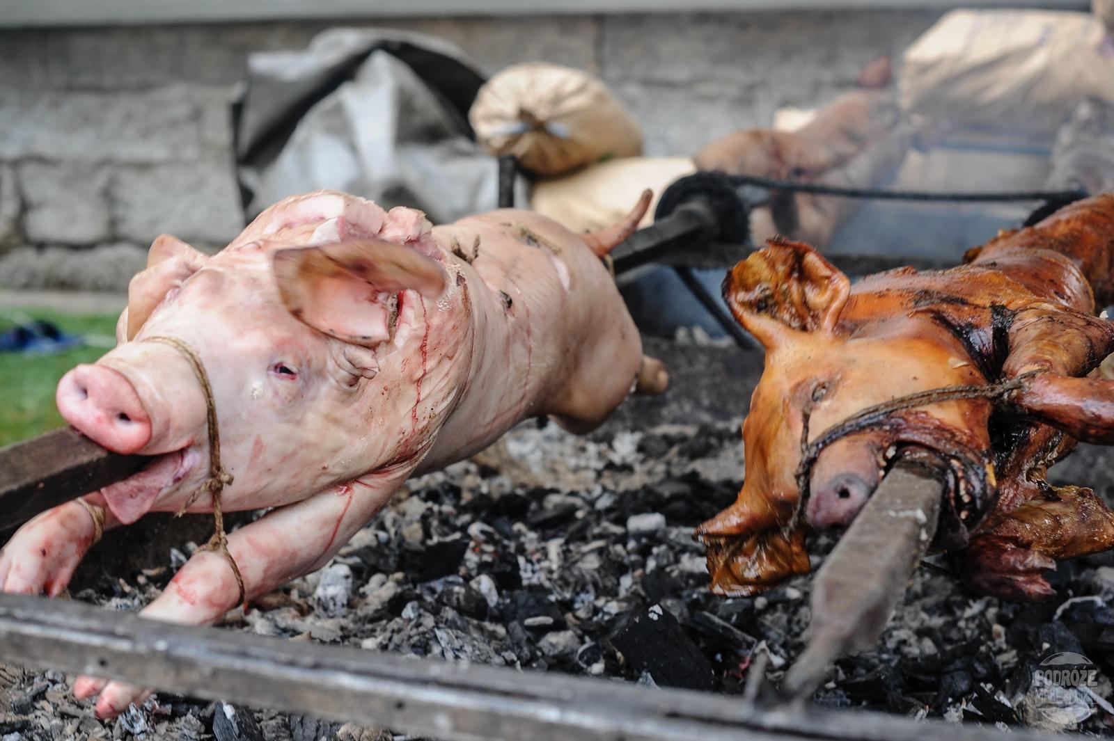 Serbia festiwal trąb w Guca jedzenie grill