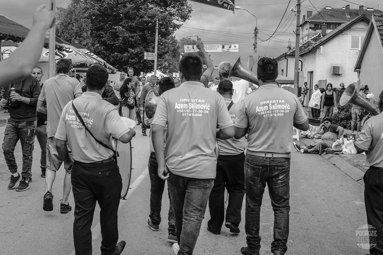 Serbia festiwal trąb w Guca zespół