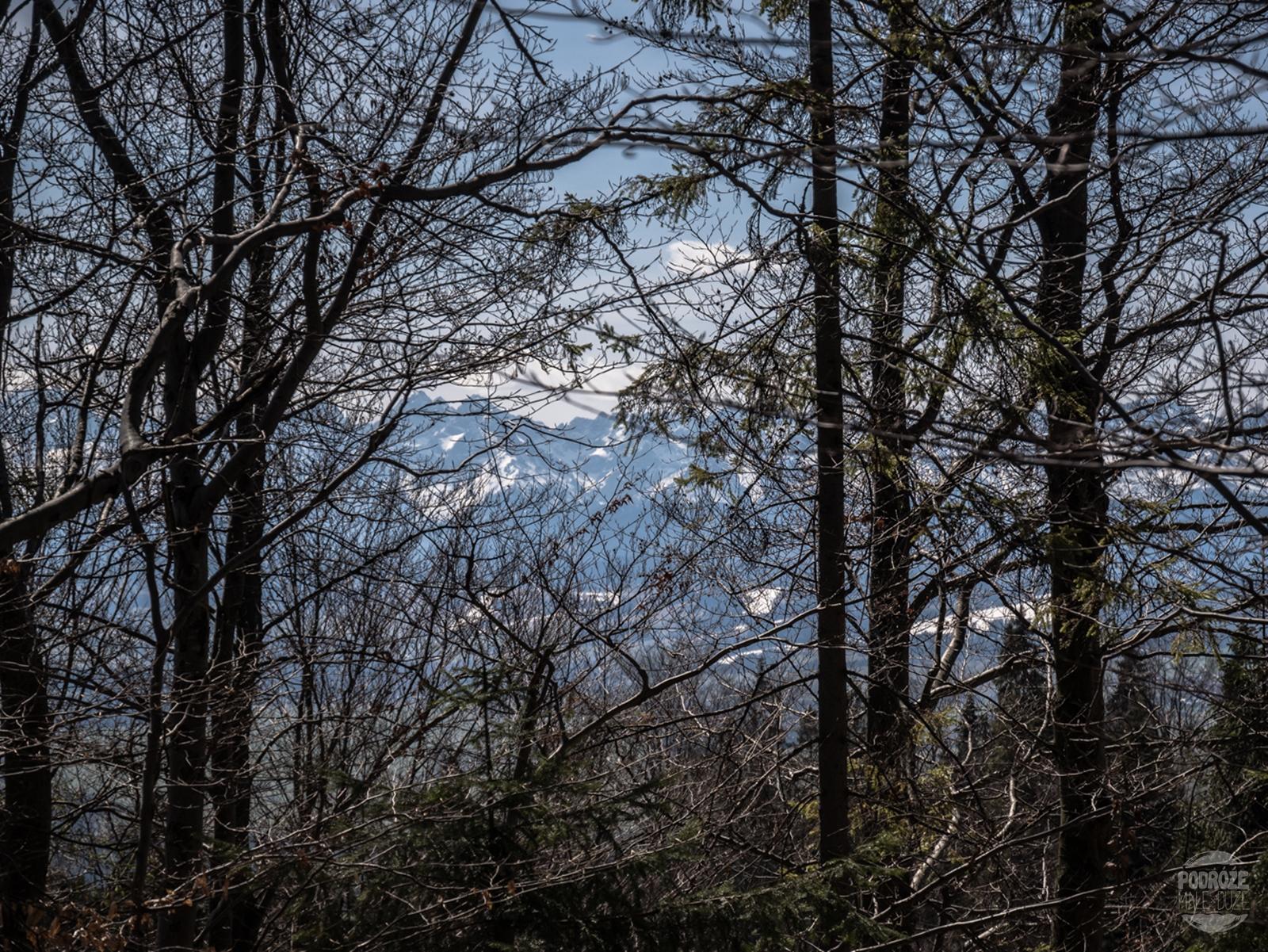 Gorce. Niebieski szlak na Turbacz i piękne widoki po drodze.