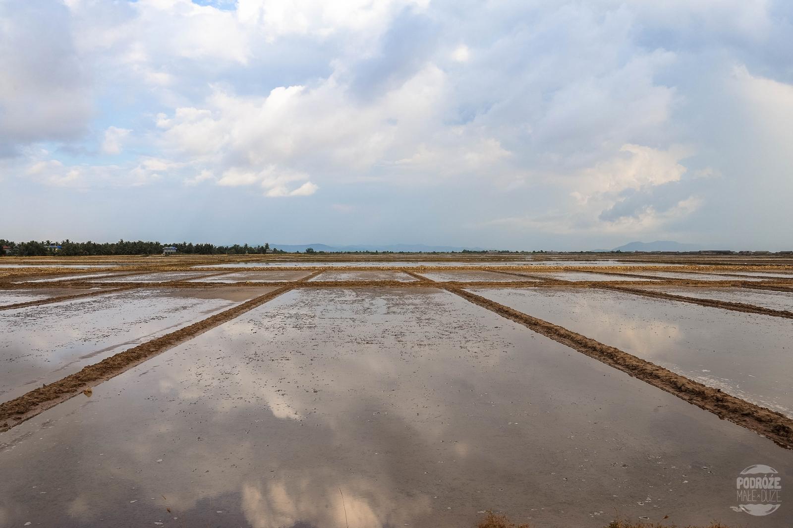 tarasy solne kampot kambodza
