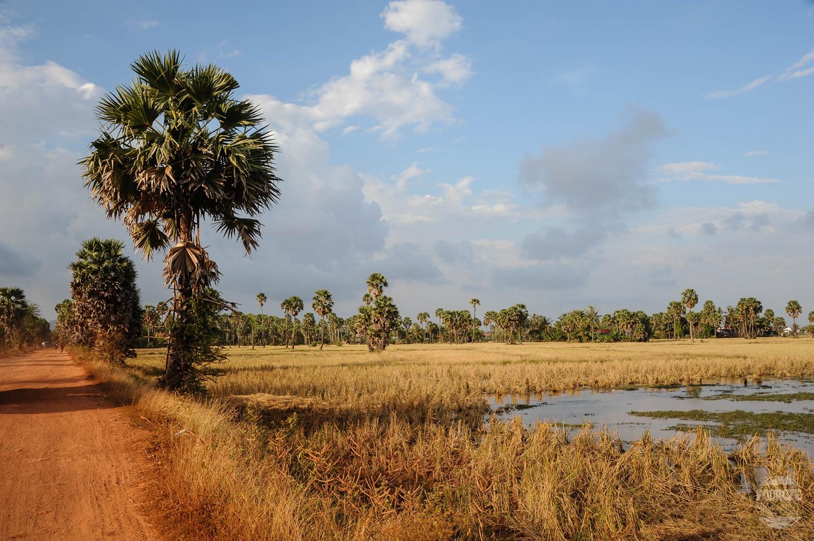 kambodza wies kampot pola