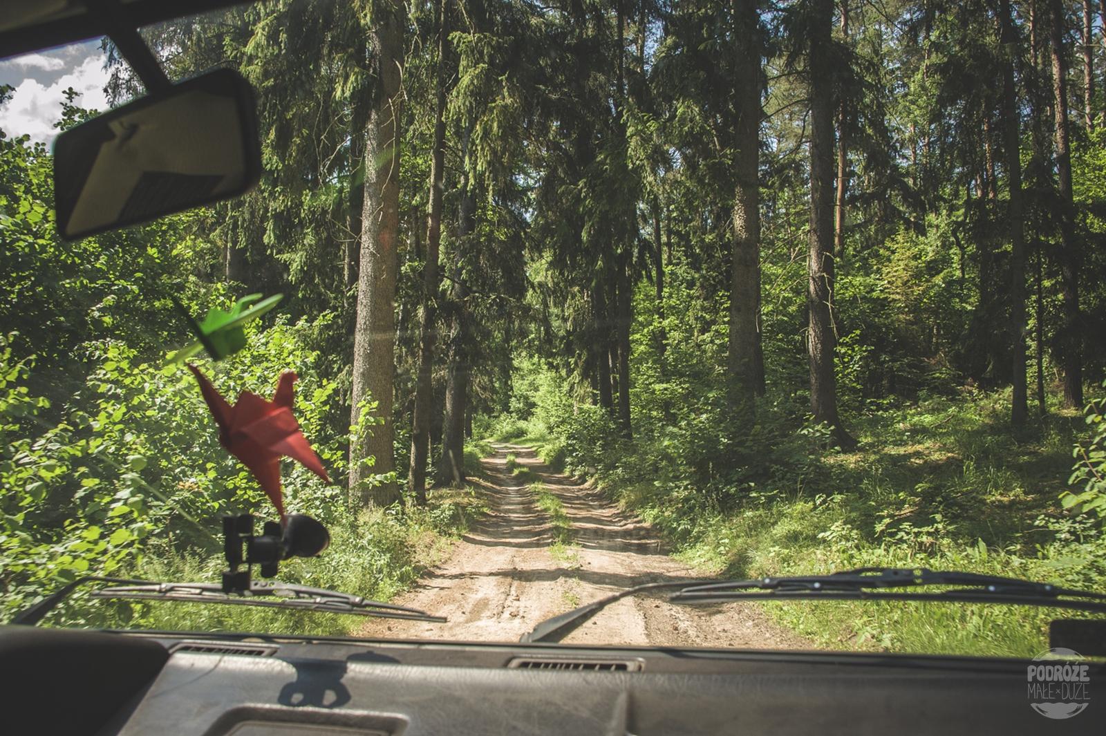 Warmia i Mazury las okolice Pasymia road trip