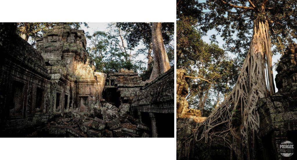 Siem Reap Angkor Ta Prohm